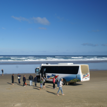 Cape Reinga Tour - Ninety Mile Beach