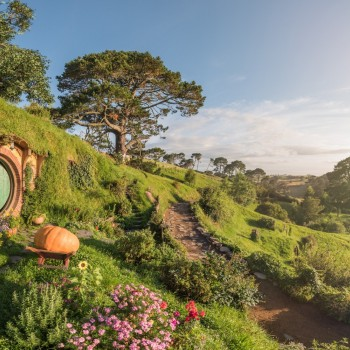 Hobbit home in the daylight